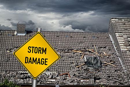 gainesville fl storm damage